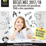GUÍA INFORMATIVA BECAS PARA NIÑOS CON NECESIDADES EDUCATIVAS ESPECIALES Y TDAH CURSO 2017-2018